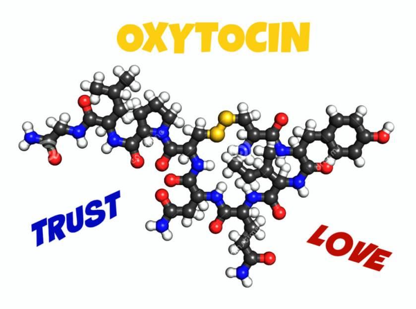 oxytocinandbpd (1)